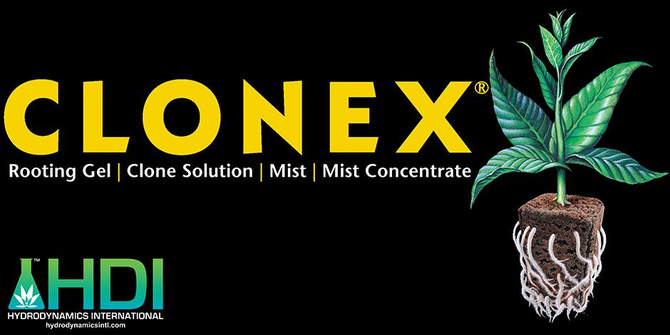 HDI-BannerClonex2