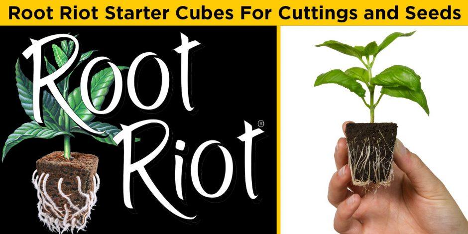 Root Riot Plant Starter Cubes - Hydrodynamics International | HDI | Hydroponics